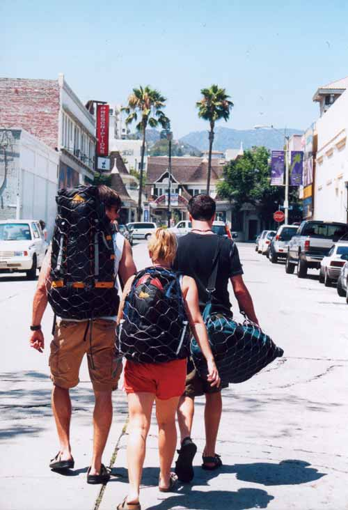 PA000 pacsafe walking