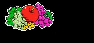 fruit of the loom logo head 2